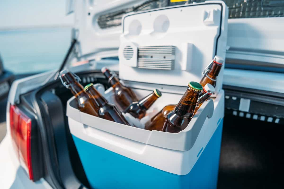 YETI Roadie 20 Cooler Review - coolerfinder.com